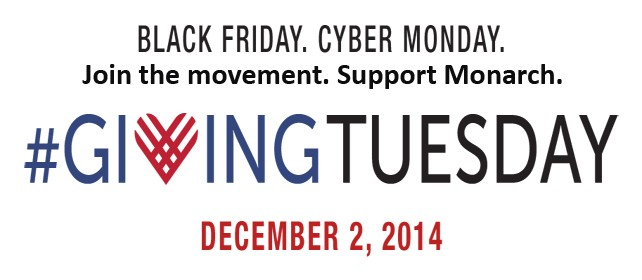 Giving Tuesday 11.2014